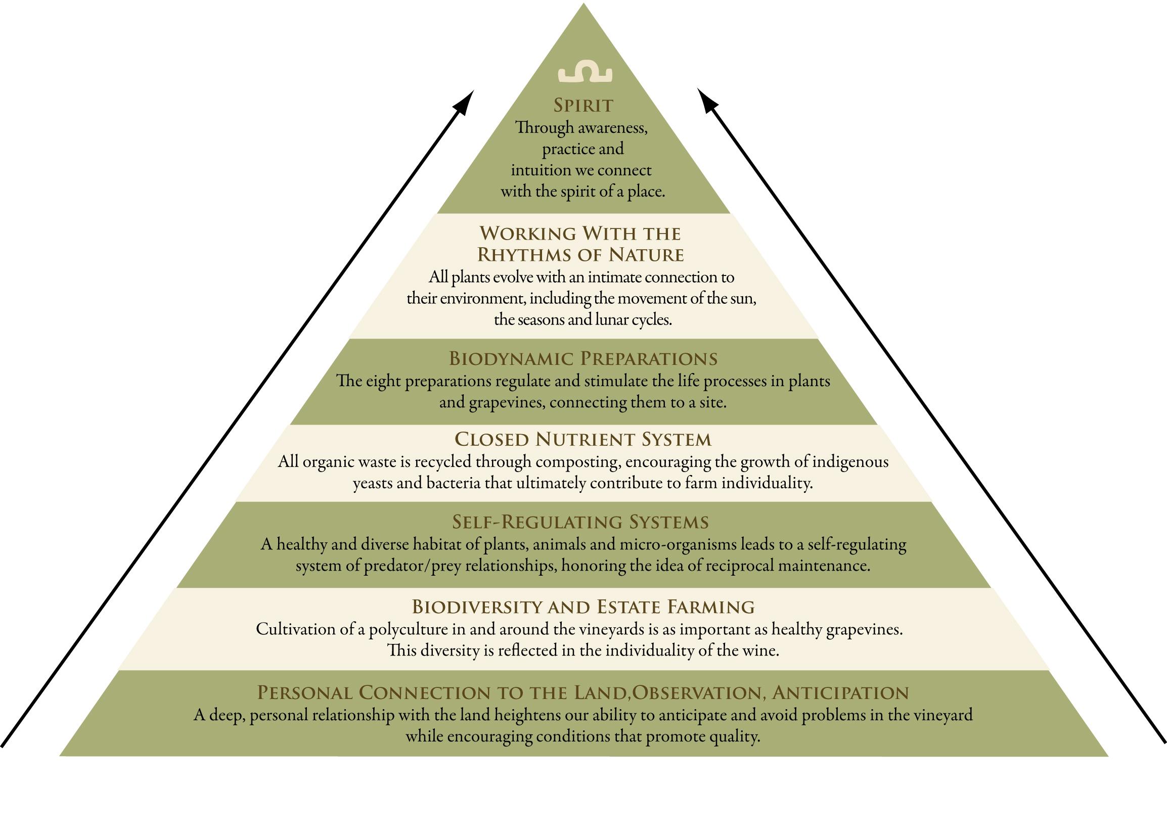 08BD Pyramid